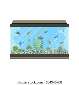 Cartoon  home glass aquarium illustration with water, plants and fish. Isolated aquarium life clipart in flat style.