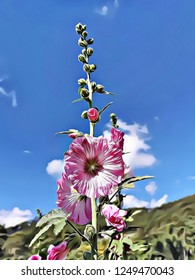 Cartoon illustration of amazing pink flower with blue sky background symbol of hope, freedom and purity