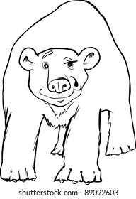 Cartoon Illustration Of Polar Bear Coloring Page Ez Canvas