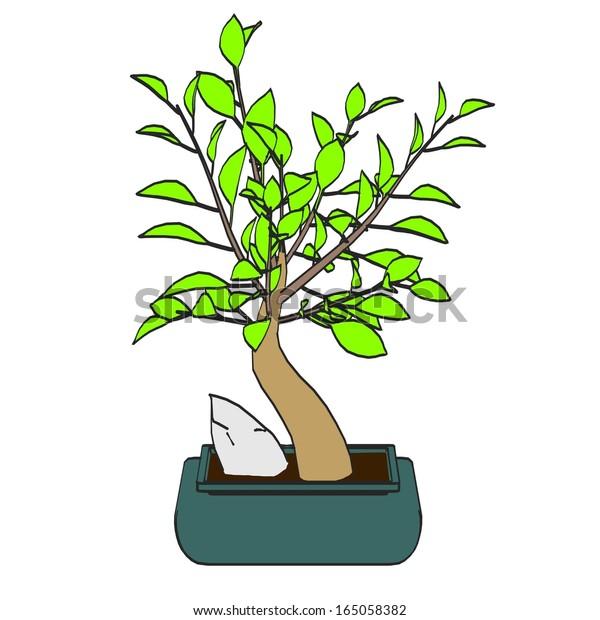 Cartoon Image Bonsai Tree Stock Illustration 165058382