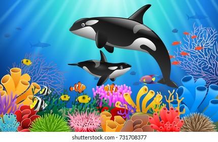 Cartoon killer whale with Coral Reef Underwater in Ocean.