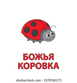 Cartoon ladybug flashcard. Illustration for children education with Ladybug text in Russian language