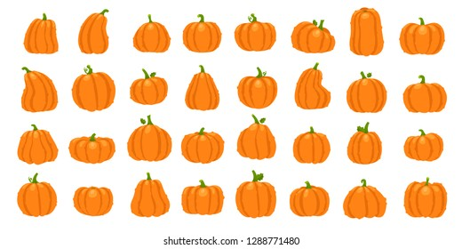 Cartoon orange pumpkin. Halloween october holiday decorative cute traditional pumpkins signs. Yellow gourd, healthy squash vegetable autumn farm nature  isolated icon illustration set