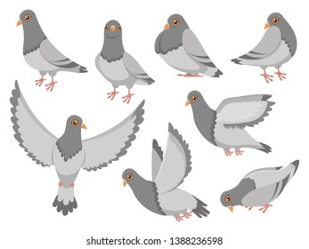 Cartoon pigeon. City dove bird, flying pigeons and town birds doves. Wild or domestic gray fly or standing dove birds. Birdie isolated  illustration icons set