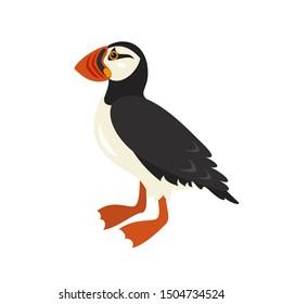 Cartoon puffin icon on white background.