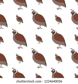 Cartoon quail seamless pattern on white background. Brown singing bird ocher endless texture.  illustration of wildlife flying character, wallpaper wrapping paper design repeatable structure