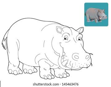Cartoon safari - coloring page - illustration for the children