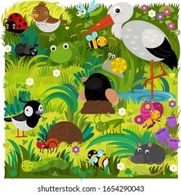 cartoon scene with different european animals rodents and bugs on the forest meadow illustration for children