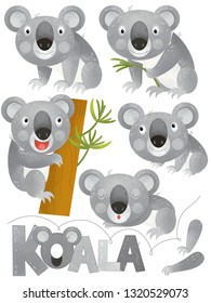cartoon scene with happy and funny set of koala on white background - illustration for children