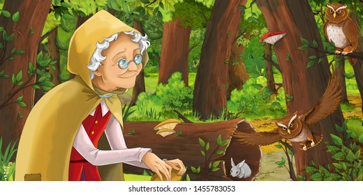 cartoon scene with happy woman in the forest encountering pair of owls - illustration for children