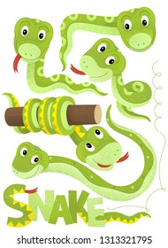 cartoon scene with set of snakes on white background with sign name of animal - illustration for children