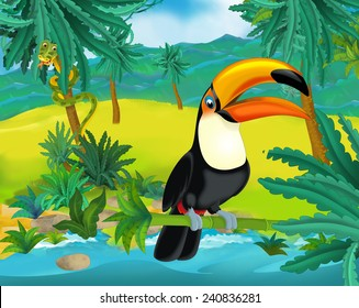 Cartoon scene - wild South America animals - toucan - illustration for the children