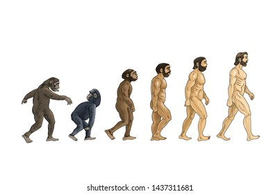 cartoon theory of evolution, white background