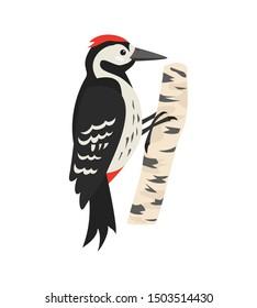Cartoon woodpecker icon on white background.