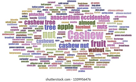 Cashew Word Cloud Aligned Isolated