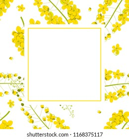 Cassia Fistula - Golden Shower Flower Banner Card. Illustration