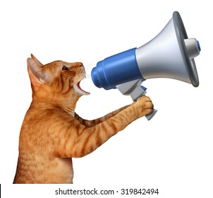 Cat announcement concept as a generic feline holding a bullhorn or megaphone to announce news or promote pet and veterinary issues or animal marketing and promotion isolated on a white background.