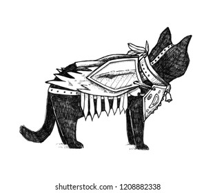 Cat in armor. Nice hand drawn illustration. Modern fantasy middle ages drawing. It can be used for printing on t-shirts, cards, or used as ideas for tattoos.