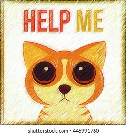 Cat begging for help. Help Me.