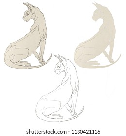 Cat illustration set