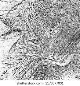 Cat looks away. Cute pussycat relaxed looking to side. Portrait of cat's face in profile. Graphic illustration in black and white. Imitation of hand drawing.