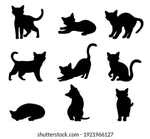 Cat set different poses black silhouette isolated on white background. raster
