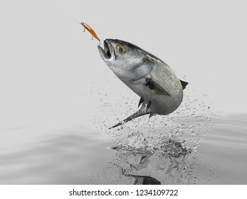 Cathing Bluefish in black background with splashes hooked by trolling bait 3d render