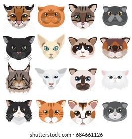 Cats heads icons emoticons  set.