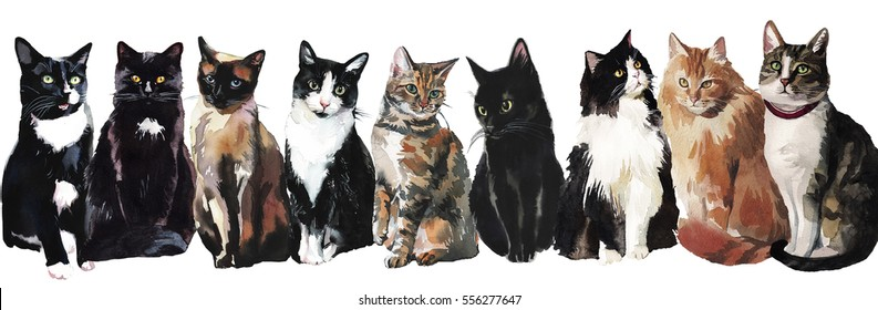 Cats Watercolor Border Isolated on White Background.