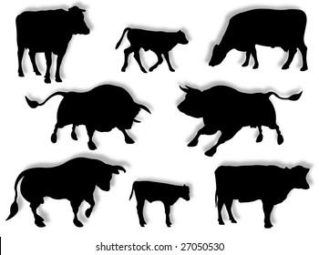 Cattle in silhouette to represent farm animals
