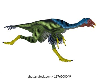 Caudipteryx Dinosaur Running 3D illustration - Caudipteryx was an oviraptor beaked carnivorous dinosaur that lived in China in the Cretaceous Period.