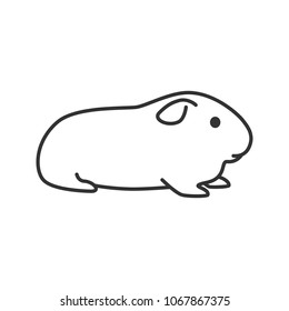 Cavy linear icon. Thin line illustration. Domestic guinea pig. Contour symbol. Raster isolated outline drawing