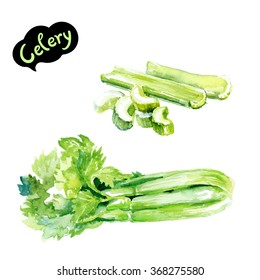 Celery watercolor illustration. Chopped celery isolated on white. Kitchen herbs watercolor isolated on white background.