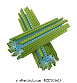 Cell structure of centriole.