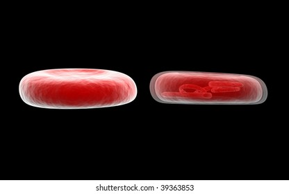cells with reflection and black background