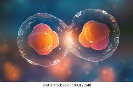 Cells under a microscope. Cell division. Cellular Therapy. 3d illustration on a dark background
