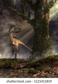 A Ceolophysis hunts in a dense Jurassic era forest.  Near a rocky stream, this dinosaur hopes to find some prey that has emerged from the primeval jungle. 3D Rendering