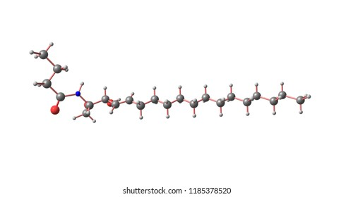 Ceramides are a family of waxy lipid molecules. A ceramide is a molecule composed of sphingosine and a fatty acid. 3d illustration