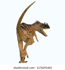 Ceratosaurus Dinosaur Tail 3D illustration - Ceratosaurus was a theropod carnivorous dinosaur that lived in North America during the Jurassic period.