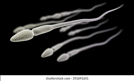 CGI visualization of the sperm (electronic microscope simulation) with focus effect (black version)