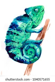 Chameleon. Hand drawn watercolor  illustration