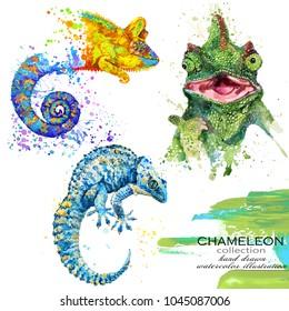 chameleon lizard hand drawn watercolor illustration set