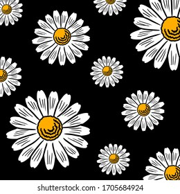 Chamomile daisy summer white flowers as graphic floral botanical pattern illustration