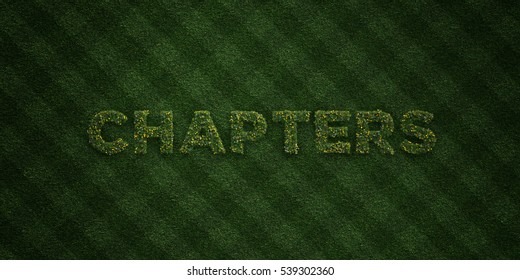 CHAPTERS - fresh Grass letters with flowers and dandelions - 3D rendered royalty free stock image. Can be used for online banner ads and direct mailers.