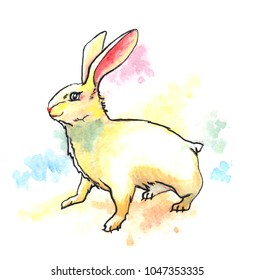 Cheerful yellow rabbit standing in red, yellow, blue, and green paint splashes.