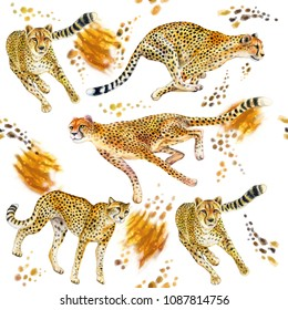Cheetahs running. Seamless Pattern. Cheetah on the run. Wallpaper. Wild cat islated on white background. Watercolor. Illustration. Template. Handmade. Clip art.