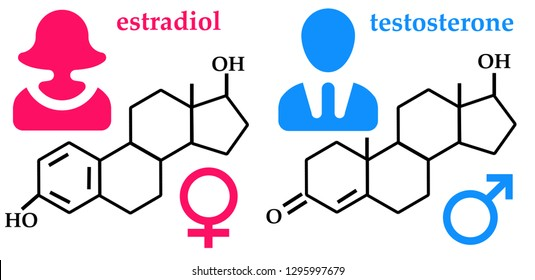 Chemical formula of female and male hormone