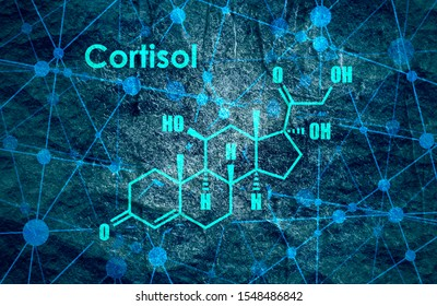 Chemical molecular formula hormone cortisol. Infographics illustration.