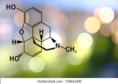 Chemical structure of morphine.