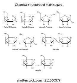 Chemical structures of main sugars: mono- and disaccharides, 2d illustration, isolated on white background, skeletal style, raster
